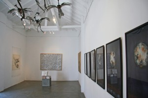 Exciting works at the Saskia Fernando Gallery